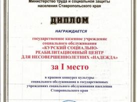 диплом_1