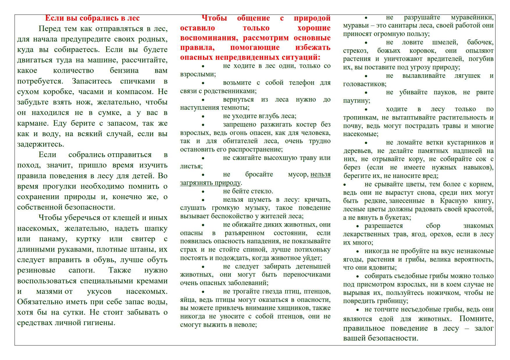 Буклет_правила_поведение_в_лесу_1