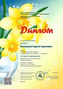 диплом Плешаков Сергей_1